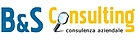 B&S Consulting Srl